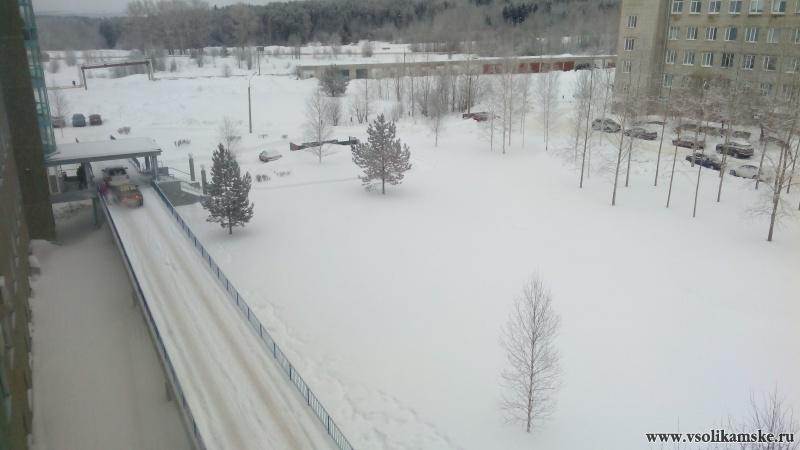 Вид из окна Перинатального центра13767