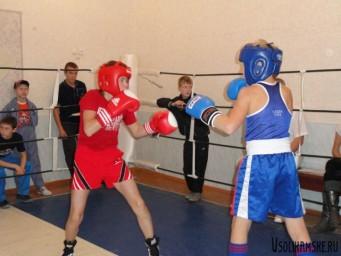 Октябрьский турнир по боксу8474