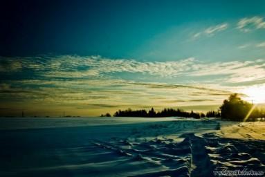 Зимнее поле...