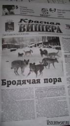 Красная Вишера от 23 ноября