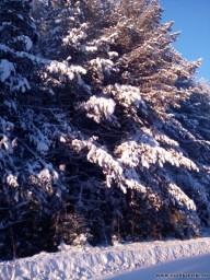 Солнце 19 декабря