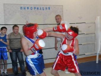 Октябрьский турнир по боксу8475