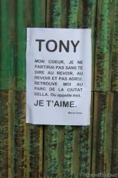 Тони, я тебя люблю