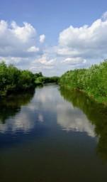 река Усолка  2020 г.