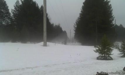 Сегодняшний туман9989