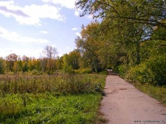 Соликамская осень9015
