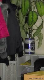 Вот такие горшочки цветочные в больнице))