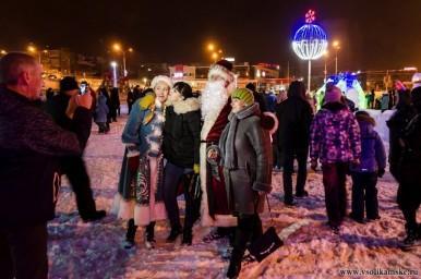 Ледовый городок 201714169