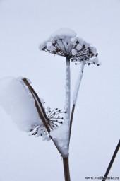 Зима13142