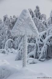 Зима13138