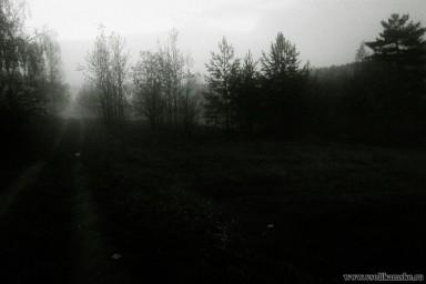 Image00179.jpg