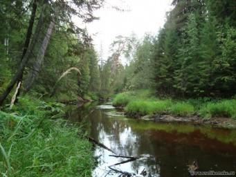 Таёжная речка Вурлам